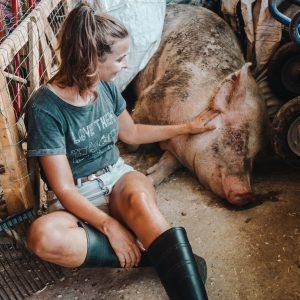 Visit at Freedom Farm Sanctuary